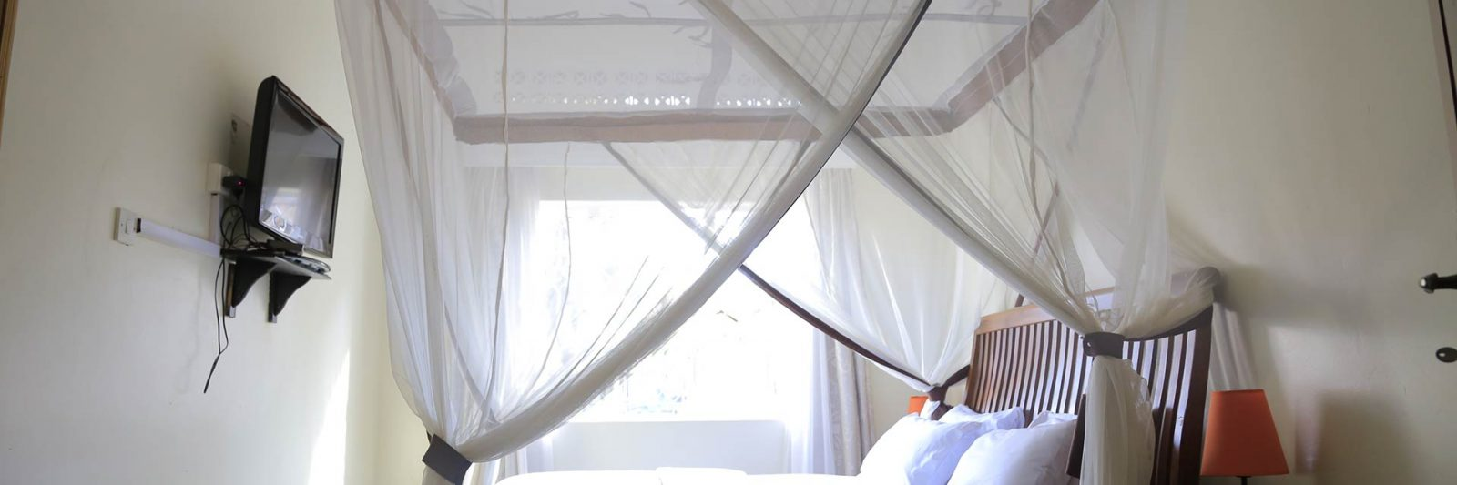 Mosquito Netting Protection